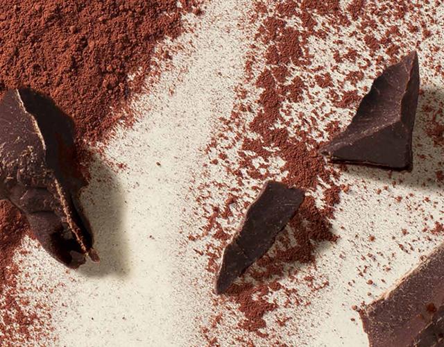 ìオニダス Ùルギーで最も親しまれている伝統のチョコレート Ņ¬å¼é€šè²©